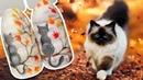 🐈 Осенний Пейзаж на Матовом Топе с Объёмными Каплями Дождя Осенний Дизайн Ногтей Гель-лаком Маникюр