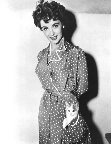Элизабет Тейлор (1960-е годы)