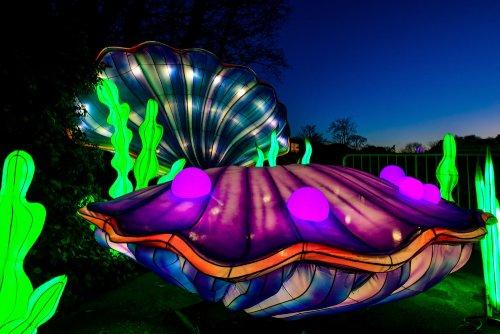 Красочные световые инсталляции в Кёльнском зоопарке В зоопарке Кёльна, Германия, зажглись световые скульптуры и инсталляции в рамках фестиваля света China Light Festival, который продлится до 9
