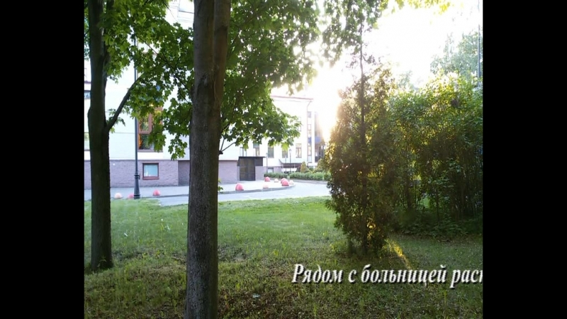 Мой фильм 1.stx Больница 31 Спб 14.05