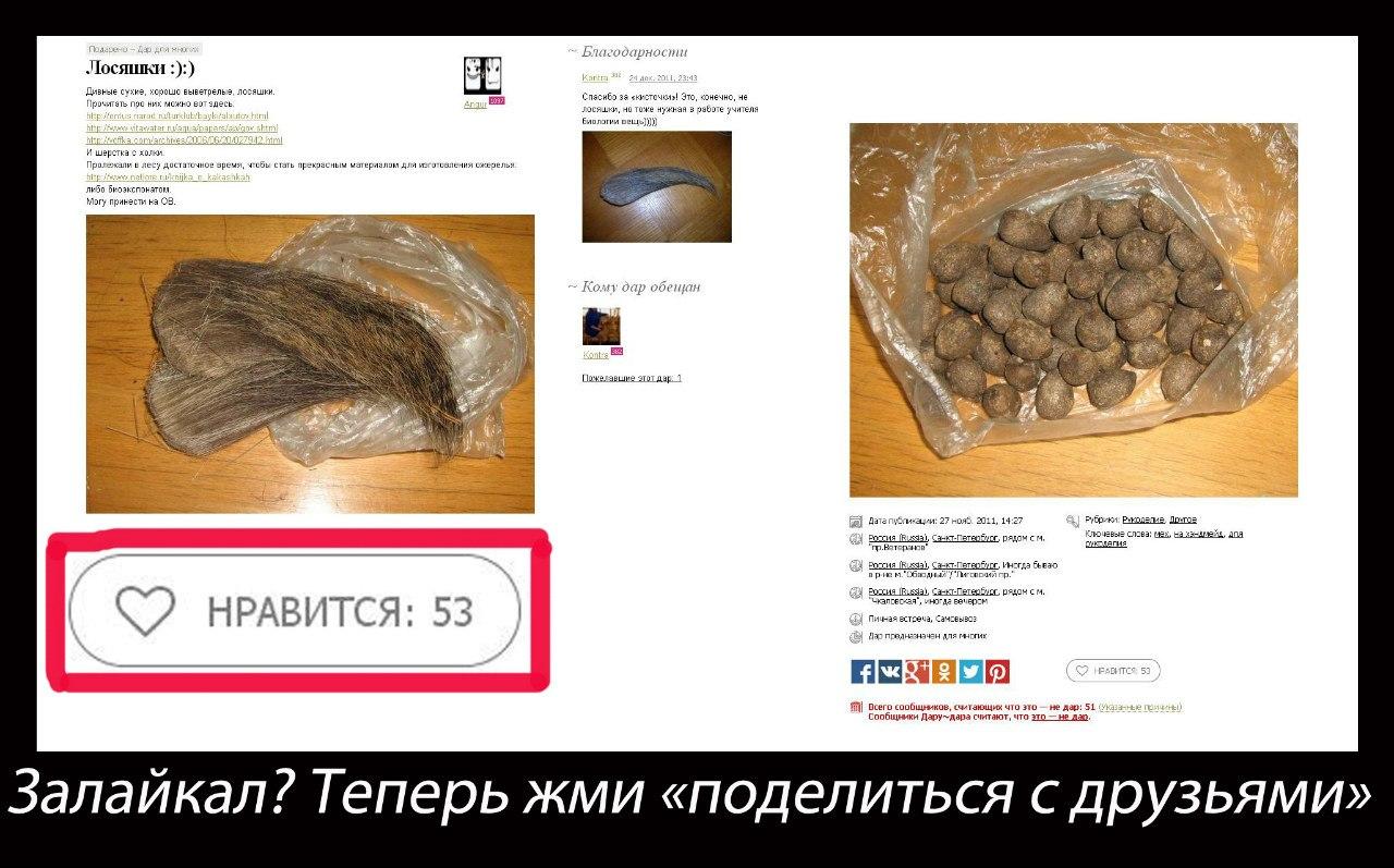 Что такое копро 2 фотография