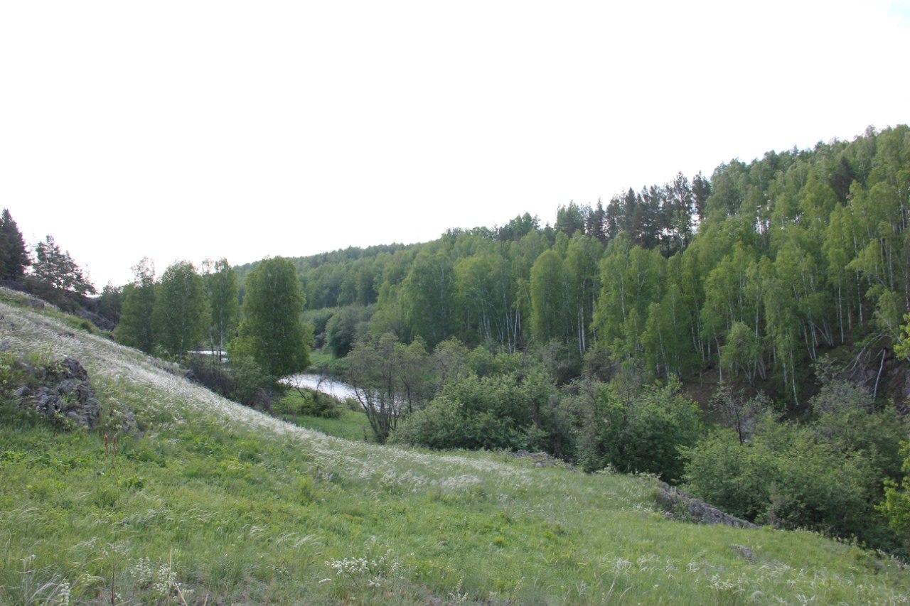 Увпадение речки Межовки вреку Багаряк