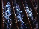 Сольный концерт Акерке Тажибаевой - Түрік классик әні _Uskudara gider iken_ ( 360 X 480 ).mp4