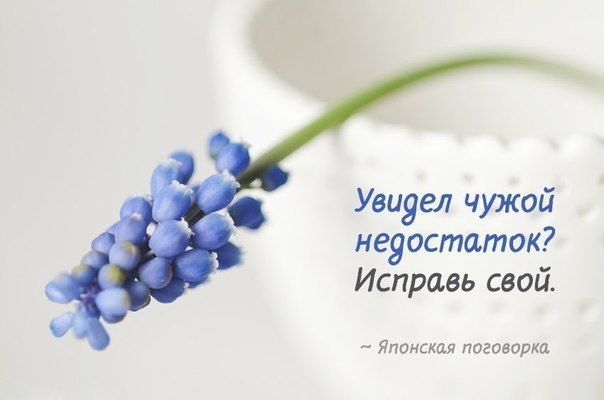 https://pp.userapi.com/c543105/v543105769/339fc/oJ-pMC4rZ_s.jpg
