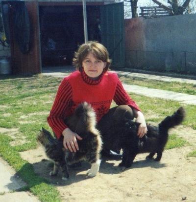 Мария Стрилок-Полищук, 16 марта 1985, Киев, id211648661