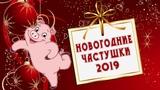Частушки на новый год 2019. Новогодние частушки год свиньи
