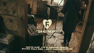 Fertile Hump - Dead Heart (Live Session)