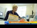 В двух школах Свердловской области подозревают вспышку менингита