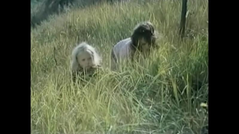 Песня любопытных коротышек Из фильма Незнайка с нашего двора Одесская киностудия 1983 г