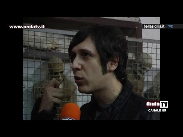 Palermo la mummia bambina - Dario Piombino espone le tecniche di imbalsamazione