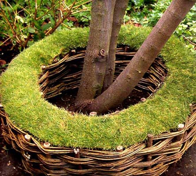 Плетеный заборчик-клумба вокруг дерева