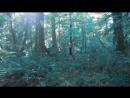 Pocahontas l cover Скрипка (720p).mp4