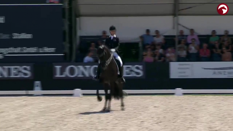 Get a brief impression of the Friday - Longines FEI WBFSH World Breeding Dressage Championships for Young Horses