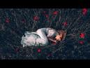 L_DG - Sensual dreams (Original mix)[Synth Collective]