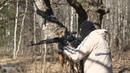 Сайга 7 62 пристрелка