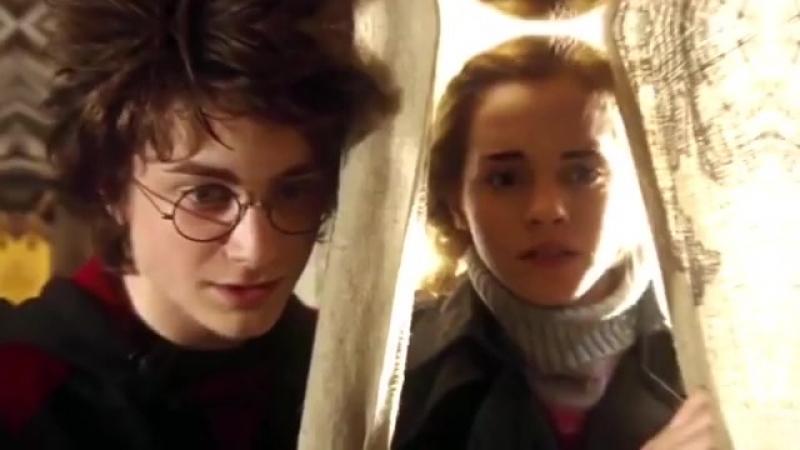 Harmione | Harry Potter vine