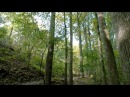 Just Ride - XC (HD MTB Video) Munich by Editors