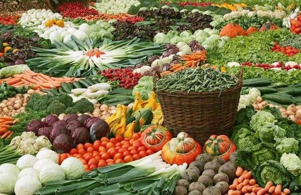 Секреты хорошего урожая дачные хитрости