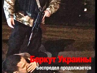 На въезде в Киев задержана машина с оружием, - МВД - Цензор.НЕТ 3064