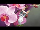 Zoobe_Zajka_YA_hochu_pozdravit_S_dnem_rozhdeniya_tebya__(