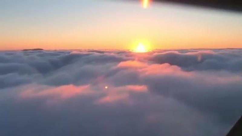 The flight, 2016 (Documentary)