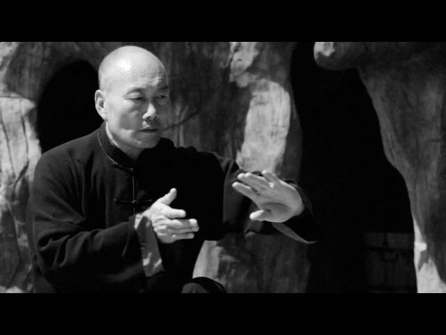 Сhen style Tai Chi - master Zhang Dong Hai - 太极宗师 张东海