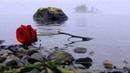 ♥♫ღ Rose of England by Chris de Burgh (Lyrics on-screen)ღ♥♫