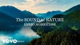 Ennio Morricone - The Sound of Nature (Season 3 Spring) - Soundtracks Collection - Rem...