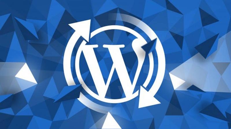 Как правильно обновить WordPress, плагины и темы?