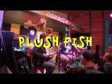Plush Fish - Одежда (акустика)