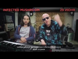Infected mushroom приглашение