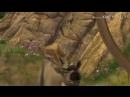 Альфа и Омега ~1 клип
