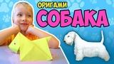 Собака из бумаги. Оригами руками ребёнка.