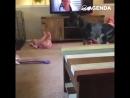 Немецкий дог играет с ребёнком
