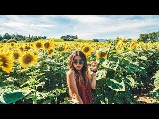 Nadine Sykora - Best dunflower field in SWITZERLAND! (Geneva)