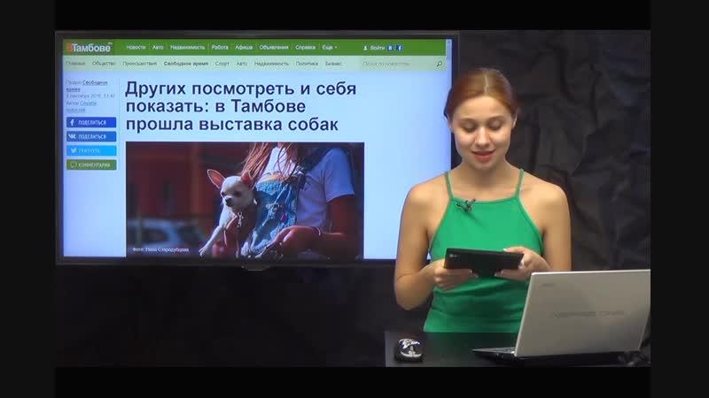 ТВ-репортаж Осенняя Заря 2016