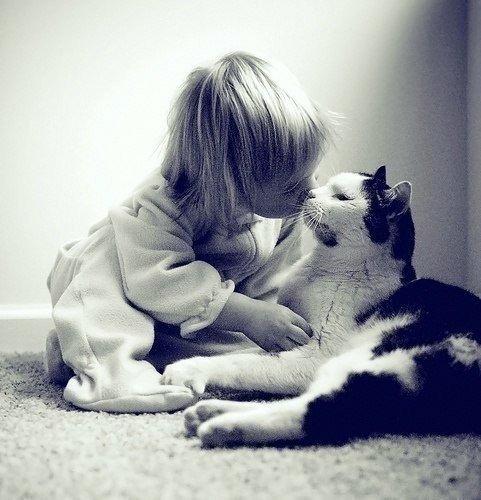 Картинки по запросу Бог создал животных, чтобы отогревать наши холодные сердца