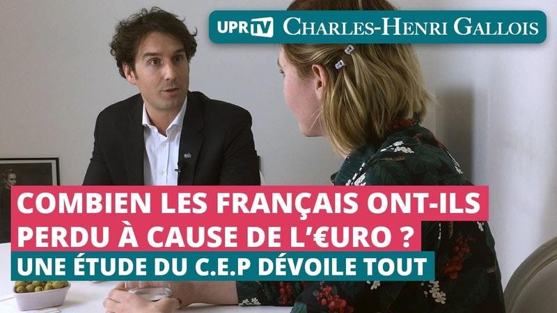 Combien les français ont ils perdu à cause de l'euro Entretien de C H Gallois par Vue Autrement