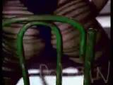 Мальчишник (Дельфин, Мутабор и ДиДжей Дэн) - Секс без перерыва