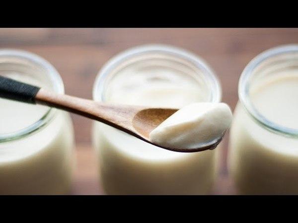 酸奶 Thick Yogurt