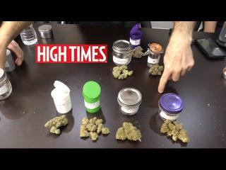 High Times U.S. Cannabis Cup 2016 ~ Sativa