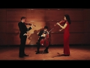 Astor Piazzolla - Oblivion arr. for String Trio