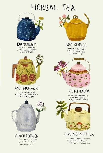 травяной чай одуванчик: поддержка печени, противовоспалительный, здоровье кожи. красный клевер: поддержка иммунитета, исцеление ран, витамин с. пустырник: осознанные сны, регулирует бессонницу,