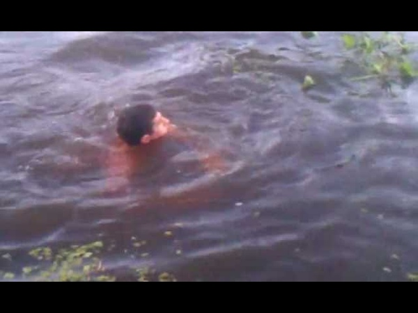 Boy jumps in the lake to catch a live gator @@