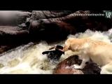 Собакен спас своего друга