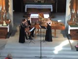Pierre Prowo - Trio in D minor for recorder, violin, bc attributed to G. P. Telemann TWV 42d10 - Ensemble Meridiana