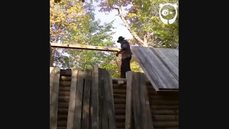 Дом в лесу - ljv d ktce -