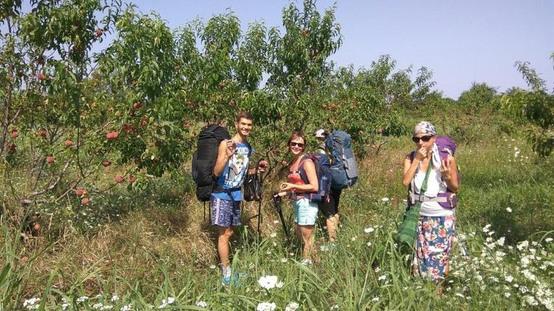 Нектариновые, персиковые сады в сыроедческом походе (Июль 2018)
