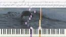 Мечта Ноты и Видеоурок для фортепиано piano cover