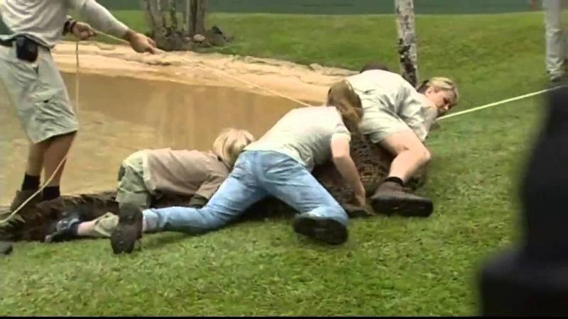 Steve Irwin's kids 'croc wrestle' in Australia